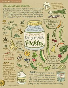 Not all pickles have to be painstakingly packed in sterilized jars. Whip up a quick batch of refrigerator pickles and save yourself the hassle! Illustrations and text by Bambi Edlund. Museum-quality p Pickled Cauliflower, Refrigerator Pickles, Refrigerator Storage, Canning Process, Do It Yourself Food, Fermented Foods, Preserving Food, Canning Recipes, Dill Recipes