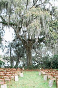 Sweetgrass Social wedding at Magnolia Plantation. Allison & Brendon. Wedding ceremony space.