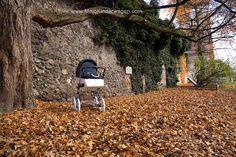 MeinKinderwagen – Kinderwagen Marita Deluxe: Ihr funktionaler Kinderwagen Klassiker! #MeinKinderwagen #Kinderwagen #Kombikinderwagen #Retro #Romantik #Luxus #klassisch #Liebhaber #Nostalgie #70er Jahre Stil #Natur Kinderwagen #funktional # modern Retro, Modern, Kids Wagon, Classic, Nostalgia, Luxury, Nature, Trendy Tree, Retro Illustration