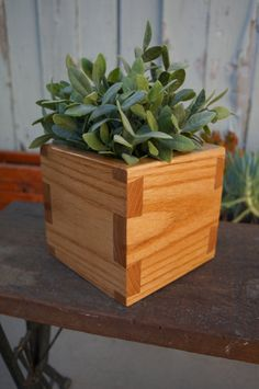 Handmade Open Dovetail Box made from Red Oak.