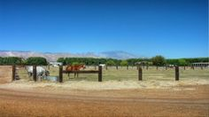 JUST LISTED  52855 Jackson St. Farm  $75,000/acre  In Coachella, CA.  Seller will sell all or part...