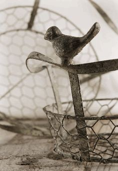 Chicken Wire Baskets with Bird Handles (set of 2 baskets) $16.99   (Great for DIY crafts and reasonably priced.)
