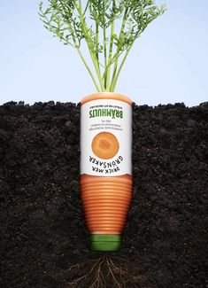 Brämhults: Carrot - Drink more vegetables || Advertising Agency: Bulldozer Reklambyrå, Karlstad, Sweden || Art Director: Andreas Österlund || Copywriter: Jenny Eklund || Photographer: Anders Lipkin || Final Art: Heidie Steiness