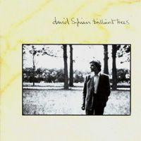 David Sylvian - Brilliant Trees (1984)
