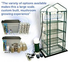 Mushroom kits for growing mushrooms, fully automated systems for creating the perfect environment to grow a variety of mushroom species. Guaranteed to grow mushroom kits.