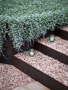 Bouldin Creek Backyard - contemporary - landscape - austin - B. Landscaping Austin, Country Landscaping, Backyard Landscaping, Landscaping Ideas, Backyard Ideas, Backyard Playground, Contemporary Landscape, Landscape Design, Garden Design