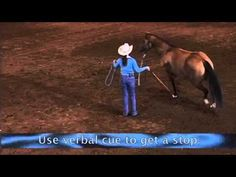 Ground Work to Help Your Sliding Stops with Road to the Horse Champion Stacy Westfall