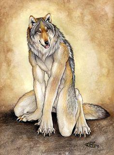 Art of Goldenwolf Generic Wolf