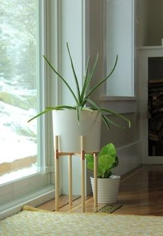 DIY Plant Decor: 5 Modern Plant Stands | Apartment Therapy