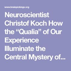 """Neuroscientist Christof Koch How the """"Qualia"""" of Our Experience Illuminate the Central Mystery of Consciousness – Brain Pickings"""