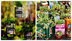 Using empty containers for decorating your garden