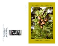 Season's greetings card Christmas 2012