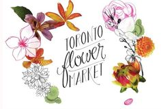 logo for the new TO flower market - delicate and appropriate