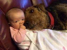 Puppy L♡VE!