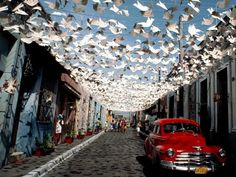Paper birds fill the sky above a street during the Santiago de Cuba carnaval, in Cuba. Photograph by Marc Pokempner, Getty Images