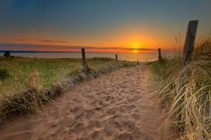 Path To Sunrise by Ryan Engstrom on 500px