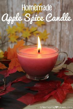 This homemade apple spice candle offers a lovely scent for your home! This homemade apple spice candle will feel your home with the heavenly scent of fall. Check out our step-by-step candle tutorial! Red Candles, Fall Candles, Beeswax Candles, Christmas Candles, Candle Wicks, Candle Holders, Candle Wax, Mason Jar Candles, Aromatherapy Candles