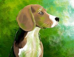 Our Beagle Remi