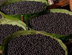 Acai Berry Çayının Faydaları