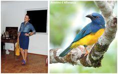 Bicho do Dia: Pipira-azul. #look #ootd Link: http://www.bloganimalchic.com/2014/02/27/bichododia-pipira-azul/