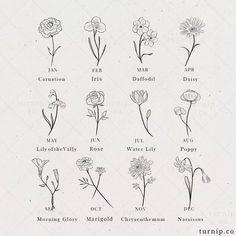 February Birth Flowers, May Birth Flowers, December Flower Tattoo, November Birth Flower, July Month Flower, June Flower, Dainty Tattoos, Mini Tattoos, Small Tattoos