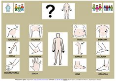 Communication Boards, Special Education, Body Parts, Activities For Kids, Basque, Nature