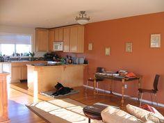 accent wall colors | pumpkin orange accent wall | Interior color schemes