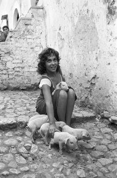 Gina Lollobrigida e i maialini