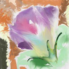 A morning glory digital sketches #ArtRage #expressionism #digital #watercolour #art