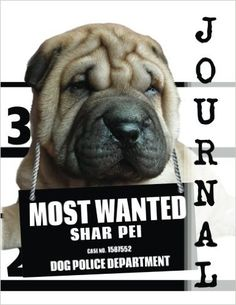 Most Wanted Shar Pei Journal: Diary Notebook (Dog Journal Notebook Diaries) -- Journal Diary Notebook for Dog lovers - Shar Pei lovers in particular! Adorable Most Wanted Shar Pei image graces the cover of this cute journal diary notebook. Popular easy to use notebook format with medium ruled feint lines on letter size pages. Helpful for anyone wanting to keep a record of things, such as using as a daily diary, journal, or simple notebook to write down ideas.