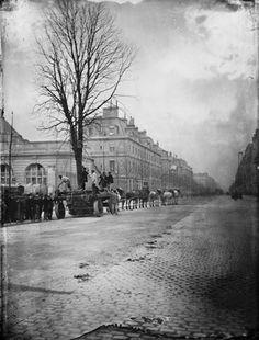Transport d'arbre sur le boulevard Saint-Michel Old Paris, Vintage Paris, French Vintage, Rue Saint Jacques, Saint Michel, Old Pictures, Old Photos, Rue Montorgueil, Montmartre Paris