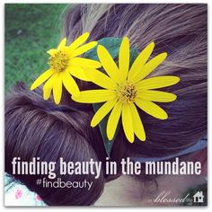 Find Beauty in the Mundane #findbeauty