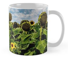Sunflower mug by Gaye G Australia+Queensland+sunflower+travel+mug+cup+product+coffee+tea+kitchen+man+male+female+women+woman+girls+green+blue+pattern+yellow+white+winter+summer+fall+autumn+spring+redbubble+Gaye G
