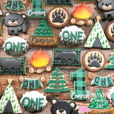 Sarah's Cookie Jar really cute camping style cookies - wilhelmina. Fish Cookies, Bear Cookies, Fancy Cookies, Iced Cookies, Cute Cookies, Summer Cookies, First Birthday Cookies, 1st Boy Birthday, 1st Birthday Parties