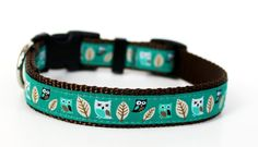 Owl Dog Collar in Teal Green Hootie Owl Pet by daydogdesigns