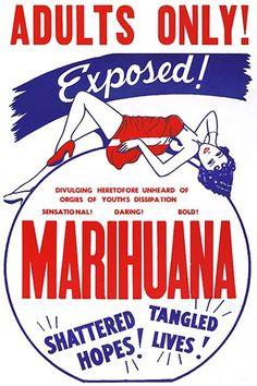 Adults Only! Marihuana - Art Print #9785872863939 #Buyenlarge #CounterCutlure,IllegalDrugsandVices #New