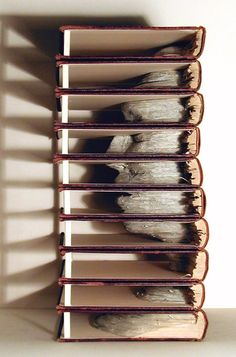 (So, is this you getting into the story, or is the story getting into your head? asks Terza of The TerZa Factor.) Book sculpture, by Brian Dettmer