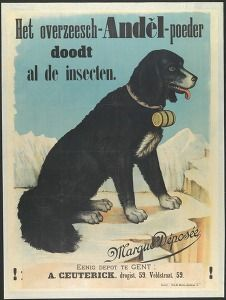 """""""Het overzeesch-Anděl-poeder doodt al de insecten"""" (The Anděl powder kills all insects), Brussels, late 19th early 20th century (Commercial & advertising poster) #Booktower"""