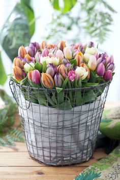 Tulips always tell me it's SPRING! I have a chicken wire basket we can line it with burlap.or gingham.and fill it with either baby's breath or colorful tulips.