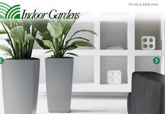 Hire indoor pot plants to brighten up your home or office. Call the experts at Indoor Gardens for indoor plant ideas and rental today.  http://indoorgardens.com.au  #Indoor_plants_perth #Indoor_pot_plants #Self_watering_pots