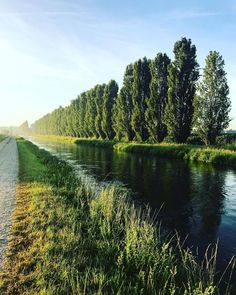 Countryside mornings  Use #SummerinLombardia to share your photos from the region and look for travel inspiration for your next vacation! Location  Cumignano sul Naviglio .  by @lulu19.89_ . #inLombardia #Lombardia #Lombardy #cremona #summer#beautifulplaces #top_italia_foto #ig_worldclub #igerscremona #igerslombardia #igersitalia #italia #italy #whatitalyis #ilikeitaly #yallerslombardia #yallersitalia #ig_cremona #ig_lombardia #ig_italia #italianlandscapes #italianplaces #stayandwander…