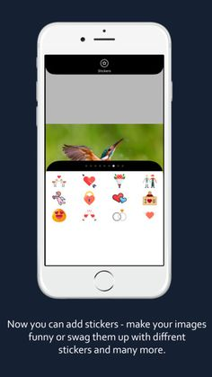 app to crop and edit pictures