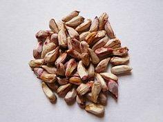 Granatapfel Kerne - Granatapfel Samen