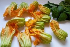 Mariatotal-Fleurs de courgettes farcies Beignets, Specialite Nicoise, Stuffed Peppers, Vegetables, Food, Stuffed Zucchini, Spice, Recipe, Stuffed Pepper
