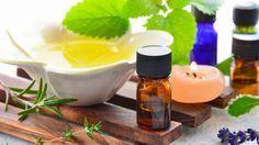 Remedios naturales para pulgas y garrapatas - Polvo