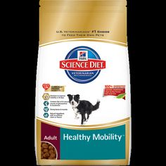 Hill's® Science Diet® Adult Oral Care dog food provides precisely balanced nutrition to improve dental health. It reduces bacteria-laden plaque & tartar build-up for clean teeth and the unique kibble helps freshen breath. - health and beauty Oral Health, Dental Health, Dental Care, Health Tips, Health Care, Hills Science Diet, Dry Cat Food, Pet Food, Teeth Cleaning