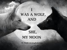 """I was a wolf, and she, my moon """"Every Night I howl to her, hoping she hears me. I see her, full and brightly lit! Even when she's dark and hides herself from me. During the day I am bleak and indifferent while I am away from her. Wolf Quotes, Me Quotes, Qoutes, Motivational Quotes, Inspirational Quotes, Wolf Spirit, My Spirit Animal, Wolf Love, She Wolf"""
