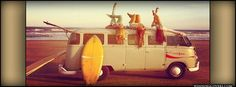 girly photography tumblr | retro icons Cover Photos : Vintage Bands timeline covers beach summer ...