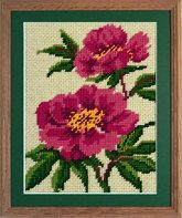 Striking pink flowers enhanced by the green foliage.  Kit includes 12 count interlock canvas, hand colour printed, Appletons tapestry wool for working in Tent stitch, needle and full instructions. Presented in a yellow gift bag with a colour picture of the finished design. Size: 19 x 19 (cm) 7.5 x 7.5 (ins).