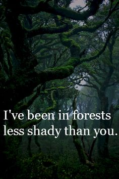 I've been in forests less shady than you, thats how you sell cars so well, shady mo-fo